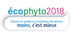 Logo Phuto 2018