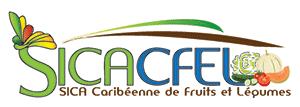 Logo Sicafel