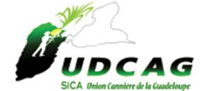 Logo UDCAG
